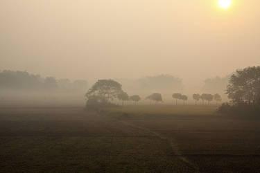 Morning mist by bingbing51