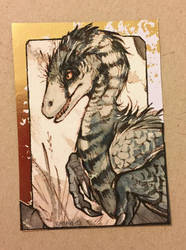 ACEO : Raptor by RajahACEO