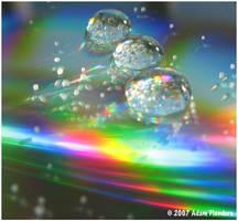 Microcosm Snowglobes by suricata5