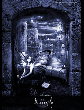 in the castle... by john-affelwoolf