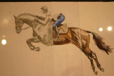 Closer in of the semester project by EventingNerd
