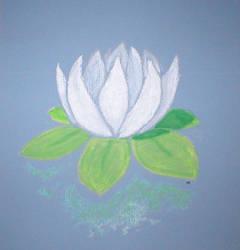 White Lily by skyshroudfalcon
