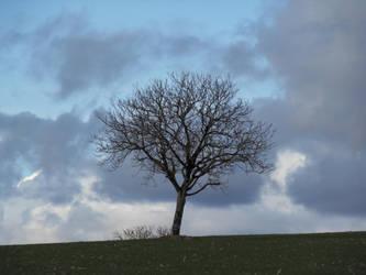 Alone. by BananaImpact