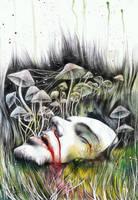 wonderland by monsieur-arlequin