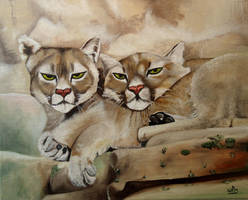 Mountain lions by WendyMitchell