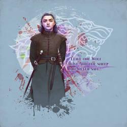 Arya Stark by verucasalt82