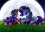 Moonlight picnic by Incinerater