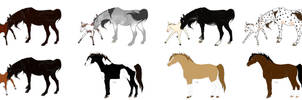 PMU Auction - Some horses CLOSED by Tumblepatchkits