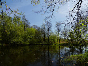 Lake in Pruszkow Park - Summer 2 by Yamraj88