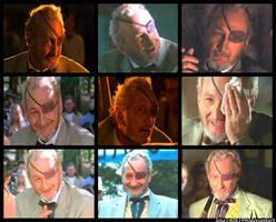 Robert Englund movie collage by WolfShadow14081990