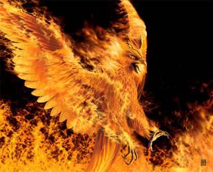 Phoenix by Imkstudios