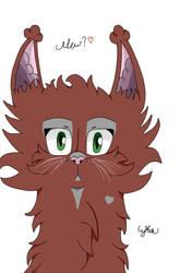 Fluffy Cat by LykiaxOokami