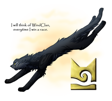 2. WindClan by FIamesong