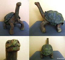 Lonesome George by DannArte