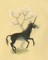 Black Unicorn by CindarellaPop