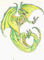 Dragon Concept by CindarellaPop