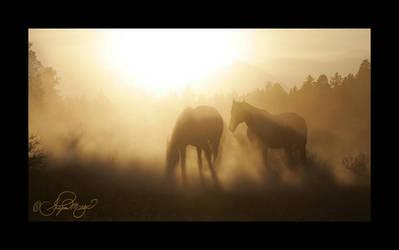 Sundown by photocrafter