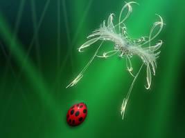 Fractal Fly by shaytu