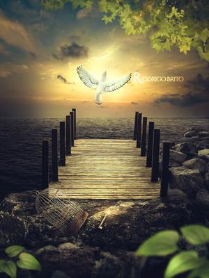 Freedom by RodrigoBrito