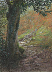 Forest : Pastel and markers on grey paper by wimke