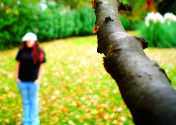 Autumn. by CaseyLu