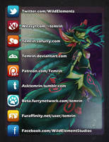 Temrin on the Internet by Temrin