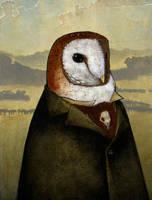 Owl In a Landscape by CheiftainMaelgwyn