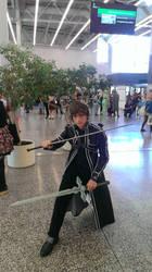 Otakuthon 2014 - Sword art online by mariogame