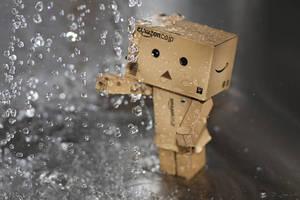 Danbo exploring the sink... by Brigitte-Fredensborg