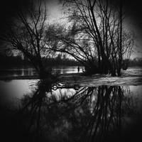 in silence by LostOneself