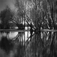 in silence II by LostOneself