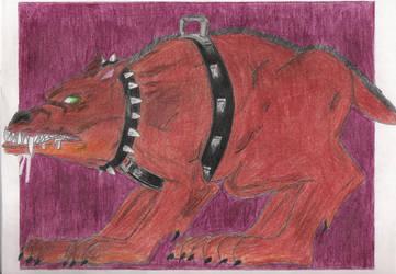 Dog by cayayofm