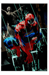 Spidey in the Rain by david-3000