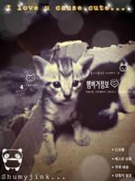 Pussycat by Pokemonxxx
