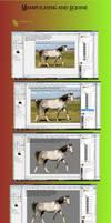 Tutorial: Equine manip. -GIMP- by GordyLuv