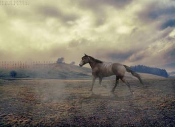 animal by GordyLuv