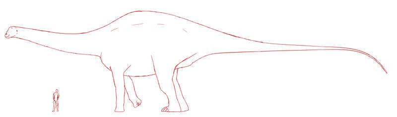 Maraapunisaurus fragillimus WIP by KaprosuchusDragon