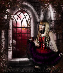Bloody night in the castle by blood-marry
