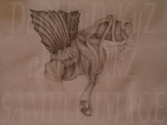 Alterior Anatomics by ALWCustomDesign