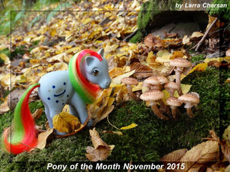 Pony of the Month November 2015 by LarraChersan