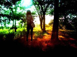 shadows fall behind you by genievenox