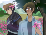 New Beginning - Klance by lightofthedeep