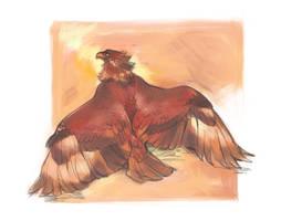 Golden eagle by Drkav
