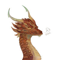 Dragon head by Drkav