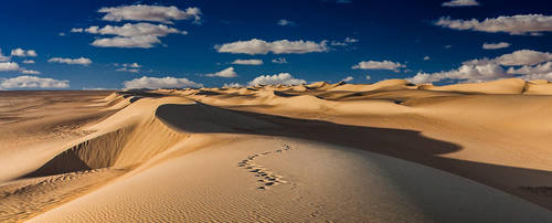 Western Sahara..Egypt by wolfreen