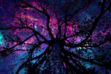 Universe nebulae tree by dirtym0rf