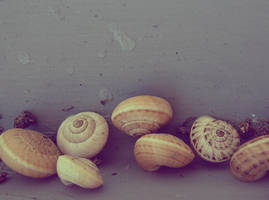 Snail Scrapyard by Armaiti-Zarich