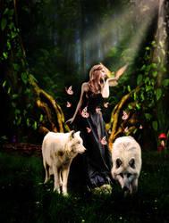 Fairytales by alessonrenato