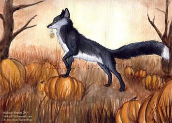 Harvest Fox - 2004 by frisket17
