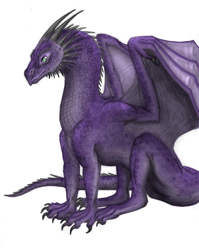 Violet Dragon by xTheDragonRebornx